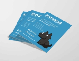 lomond flyer design